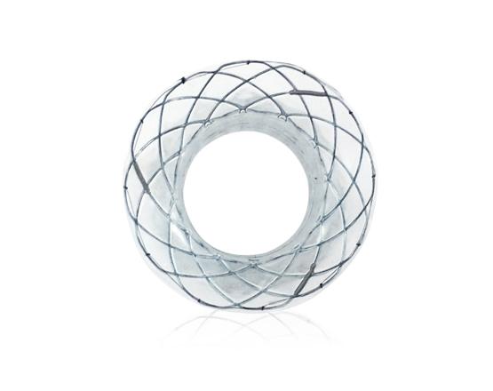 Spaxus stent 1
